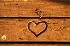 heartmono